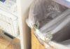 【あさイチ出演】12/12(水)NHKあさイチで仕事!「ゴミのウラ側/生ゴミのにおい撃退コーナー」で指南役